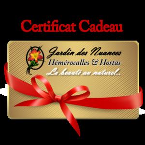 Certificats Cadeaux